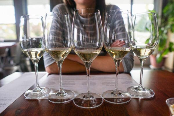 Standard White Wine Glasses