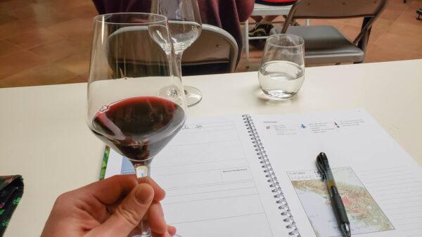 Wine Tasting in WSET Level 2