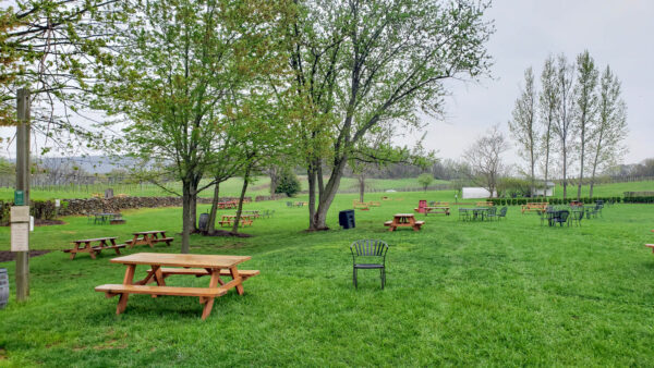 Outdoor Seating at 868 Estate Winery